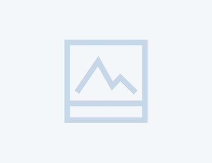 Article Grijs 100
