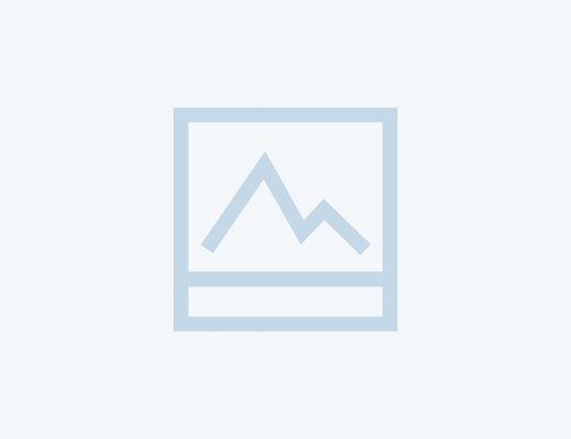 News Zwart 100